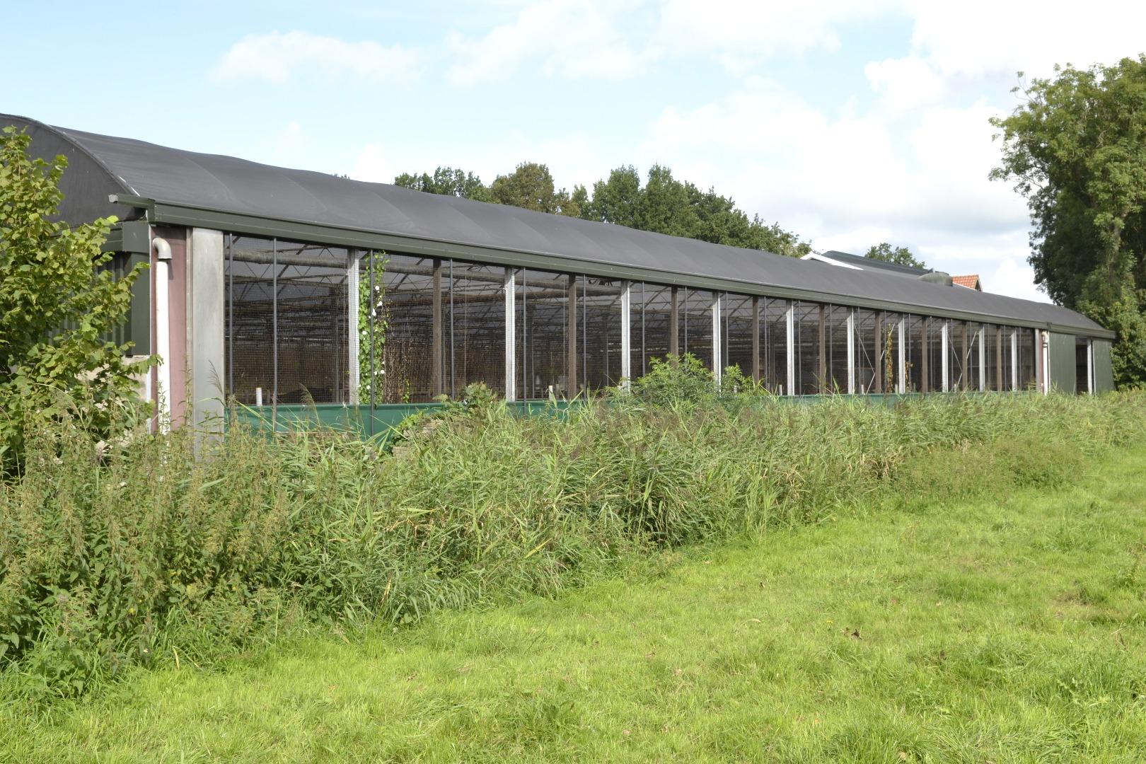 Gut bekannt Neue Dacheindeckung für erster Serrestall nach 14 Jahre | ID Agro ZM39